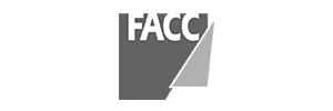 Aircraft Cabin Refurbishment FACC